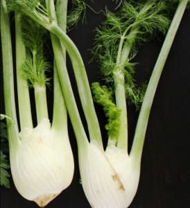 How to cut Fennel and other prep methods